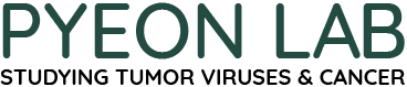 Pyeon Lab Logo